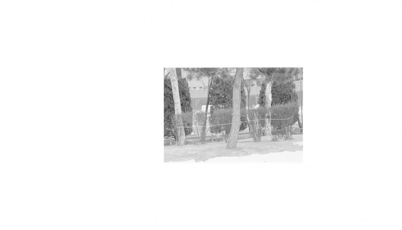 http://www.allylgu.com/files/gimgs/th-11_16_v2.jpg
